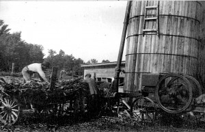Farm in southern Grand Traverse County, turn of the previous century. Image donated to HCTC.