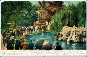postcardsealion